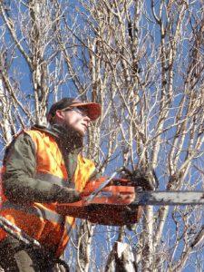 Tree Surgeon Wallingford